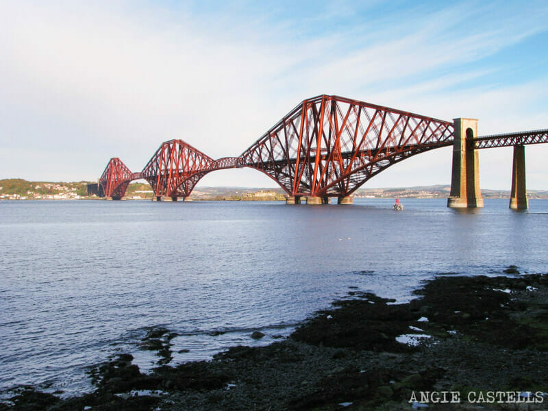 Visitar Inchcolm Island desde Edimburgo excursion 800-2