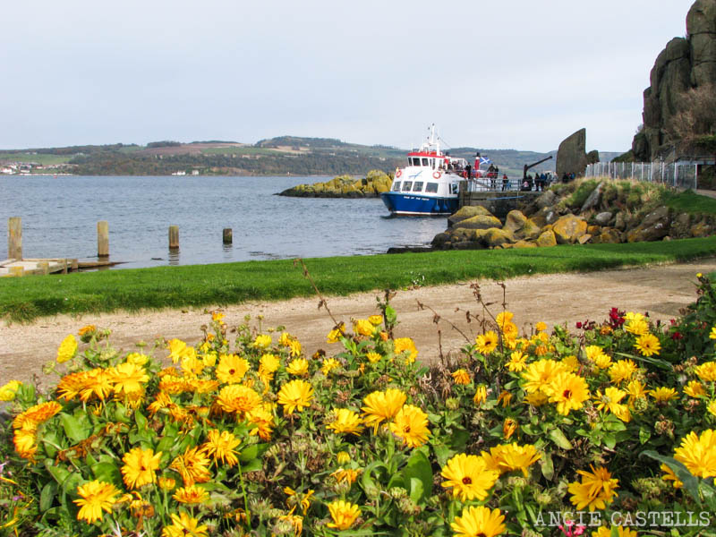 Visitar Inchcolm Island desde Edimburgo excursion