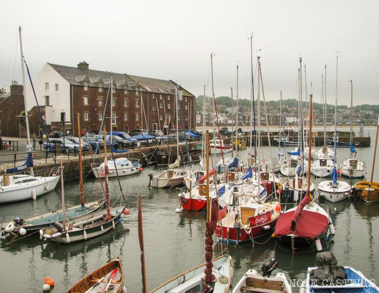 Barco North Berwick Excursion desde Edimburgo