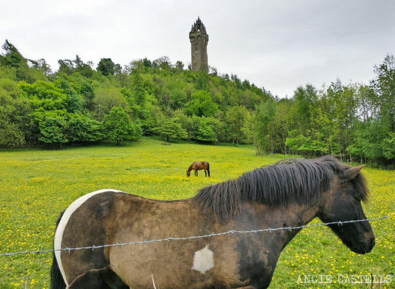 Guia Stirling que ver Wallace Monument